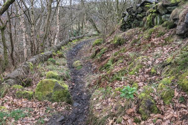 Part enclosed path
