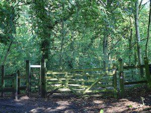 Turn right through gate