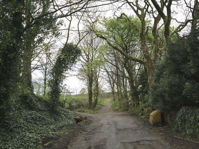 Up Lark Hill Lane