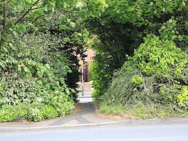 Gap in hedge to Watery Lane