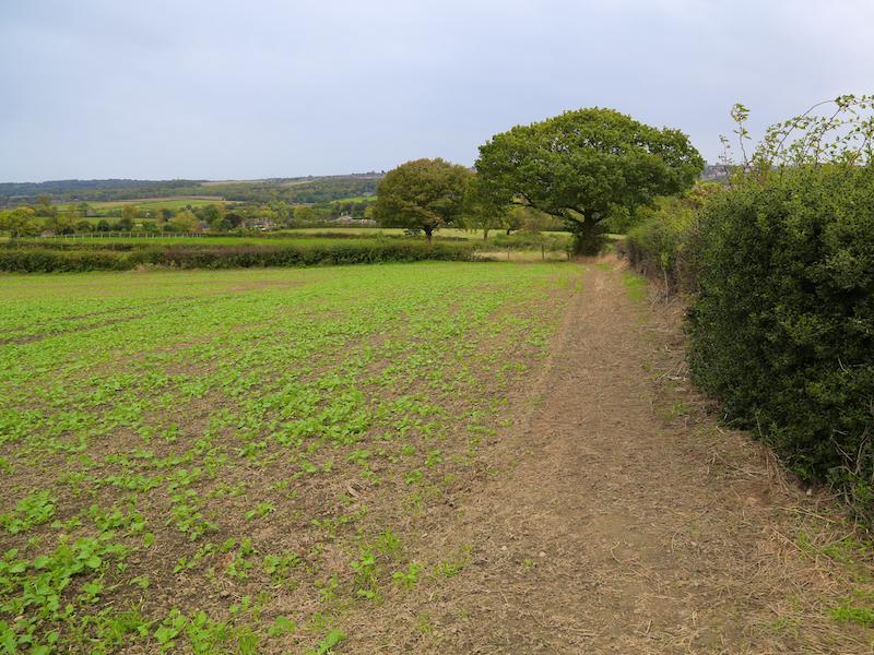 A small field