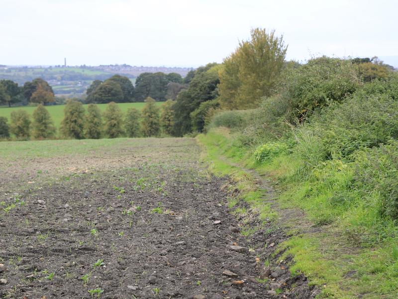 Path down to B6091