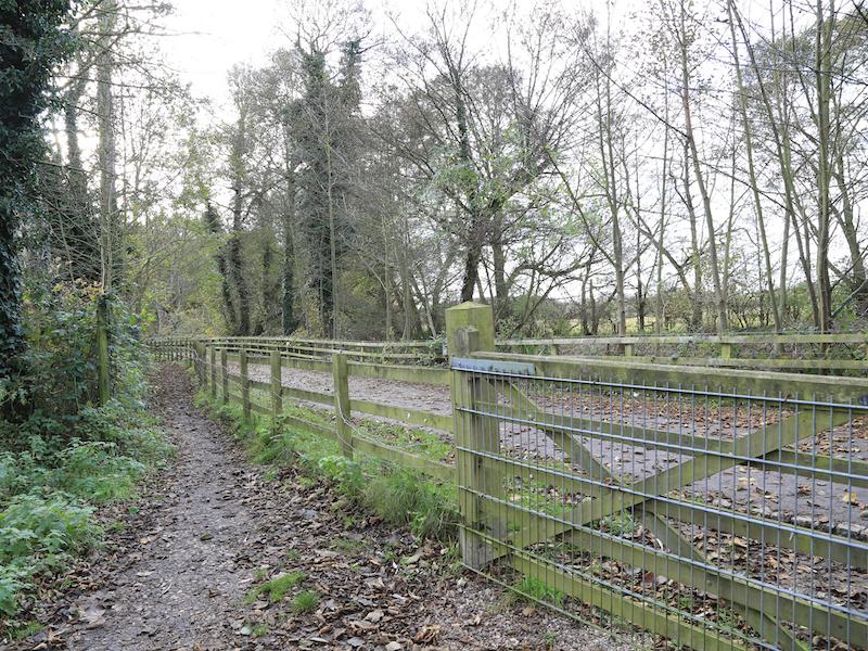 Path alongside road