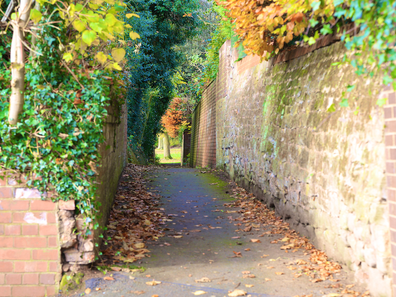 Walled path