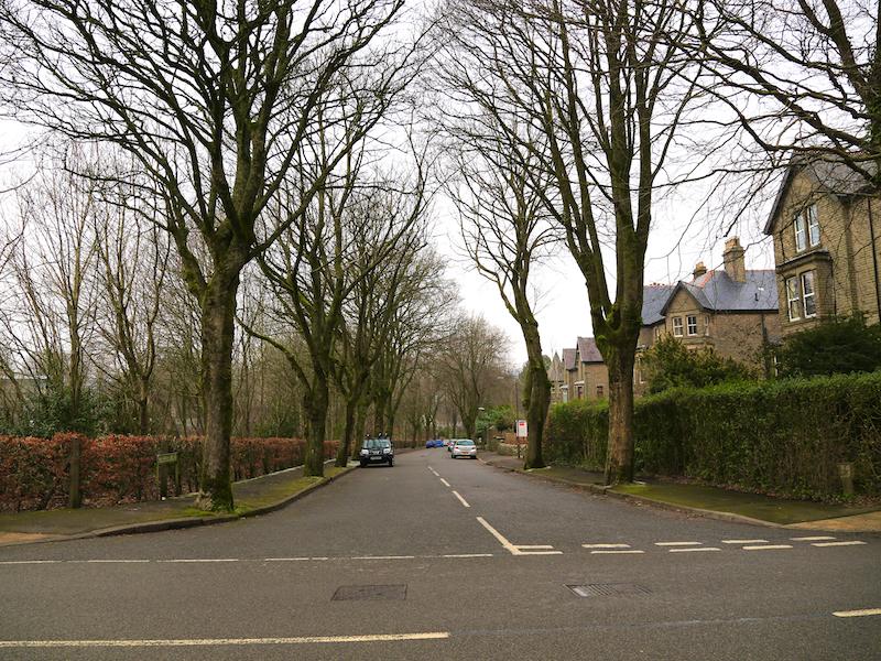 cross Green Lane