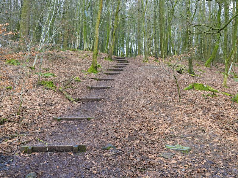 up wooden steps