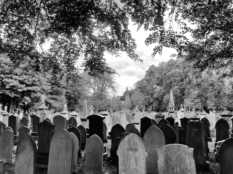 Cemetery from Barlow Moor Road