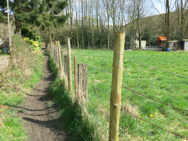 Path in front of houses