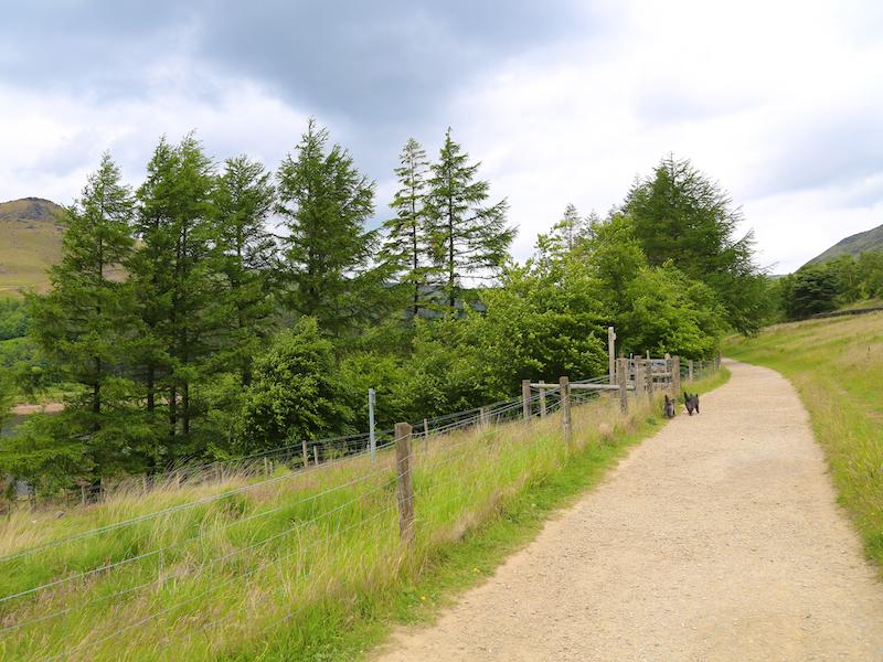 Gate marked Ashway Gap on left